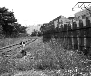 2009592_w