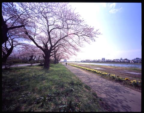 Kitakami1_w